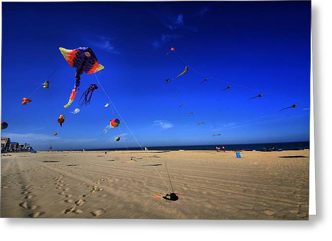 Kite Greeting Cards - Gone Flyin Greeting Card by Robert McCubbin