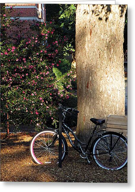 Greg Simmons Greeting Cards - Gone To Class Greeting Card by Greg Simmons