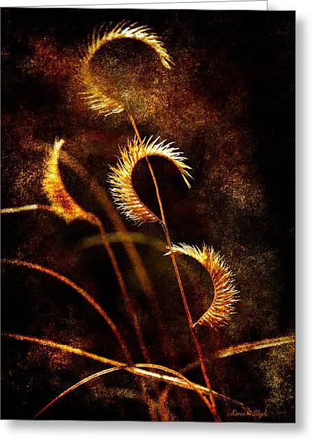 Karen Slagle Greeting Cards - Gone to Seed Greeting Card by Karen Slagle