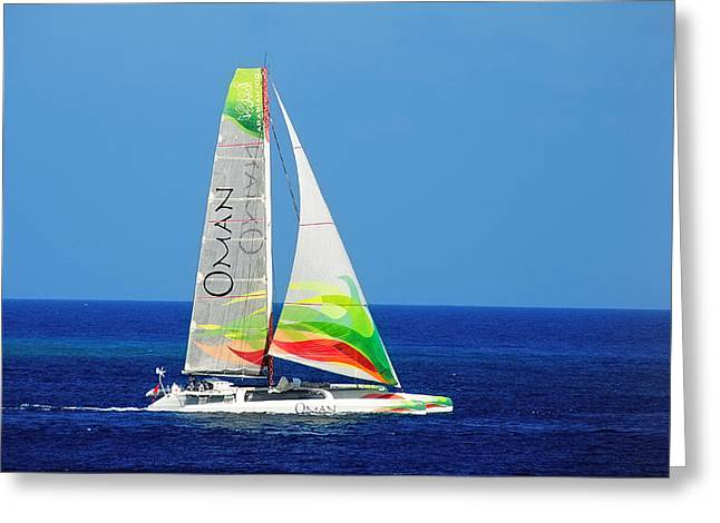 Sea Sports Greeting Cards - Gone with Wind Greeting Card by Jenny Rainbow