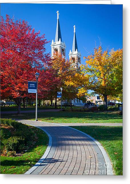Campus Landscape Greeting Cards - Gonzaga Pathway Greeting Card by Inge Johnsson