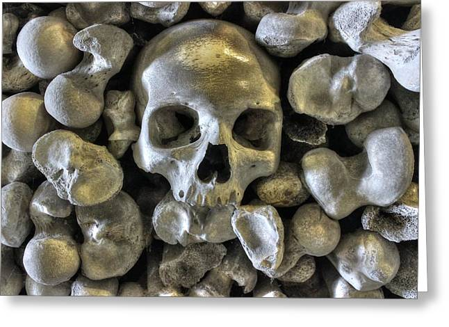 Morbid Greeting Cards - Good BoneSstructure Greeting Card by Ian Hufton