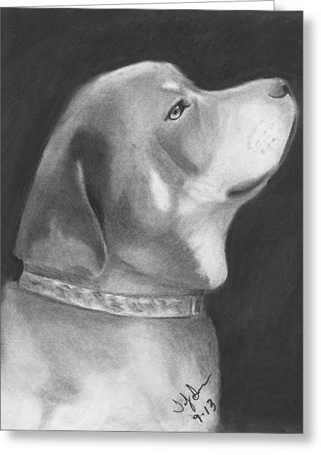 Collar Drawings Greeting Cards - Good Boy Greeting Card by Toby Smith