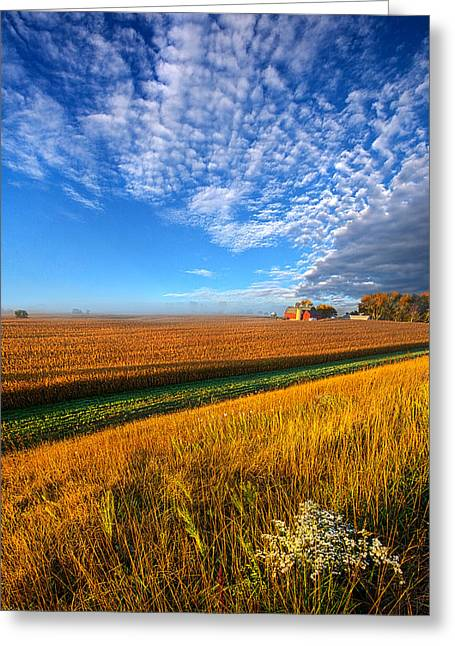 Geographic Greeting Cards - Good Day Sunshine Greeting Card by Phil Koch