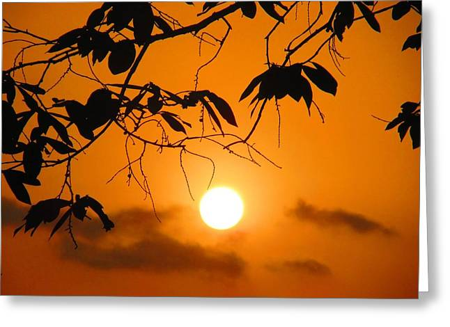 Sunset Posters Greeting Cards - Good Evening Greeting Card by Vinayak Patukale