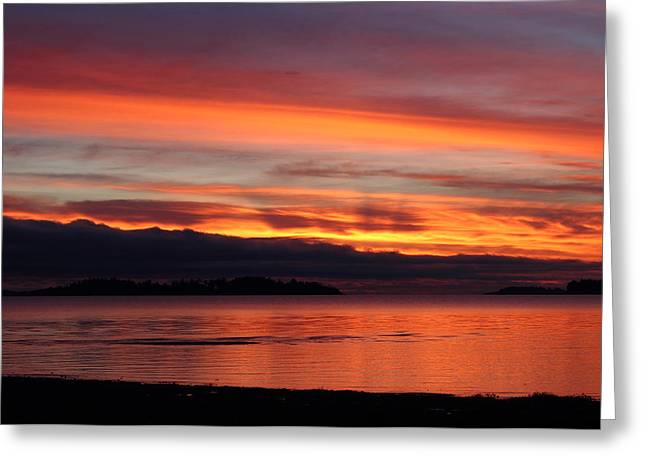 Provincial Park Bc Greeting Cards - Good Morning Greeting Card by Randy Hall