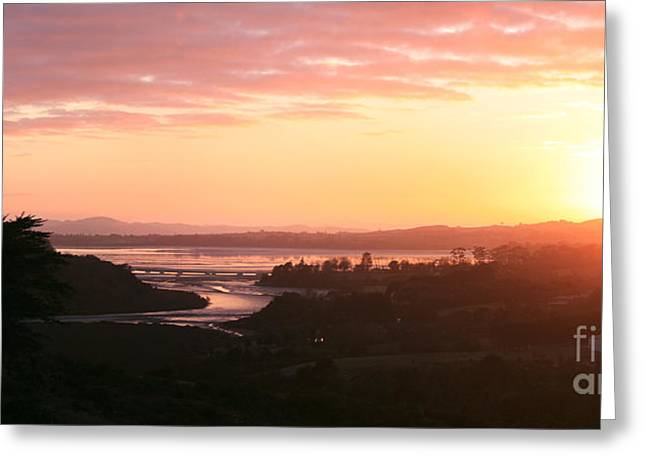 Aotearoa Greeting Cards - Good Morning Te Puru Greeting Card by Gee Lyon