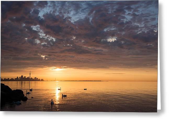 Peaceful Scenery Greeting Cards - Good Morning Toronto Greeting Card by Georgia Mizuleva