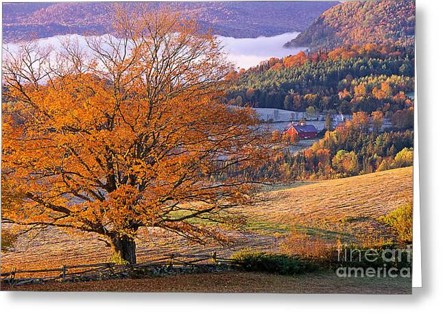 Split Rail Fence Greeting Cards - Good Morning Vermont Greeting Card by Alan L Graham