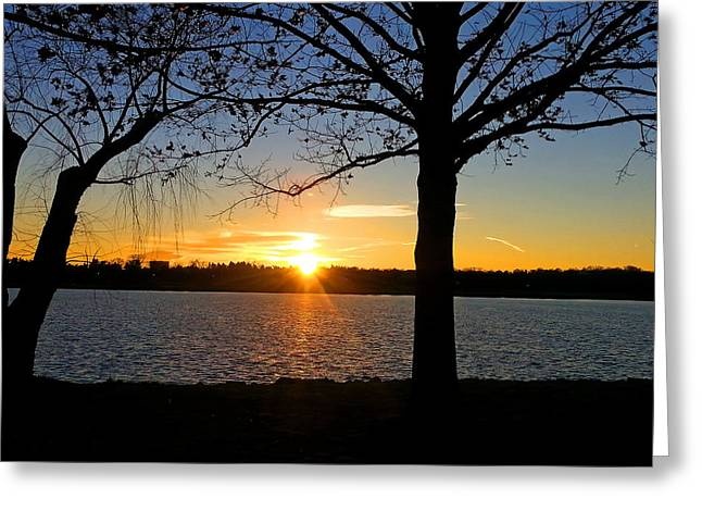 Sunset Framed Prints Digital Greeting Cards - Good Night Potomac River Greeting Card by Emmy Marie Vickers