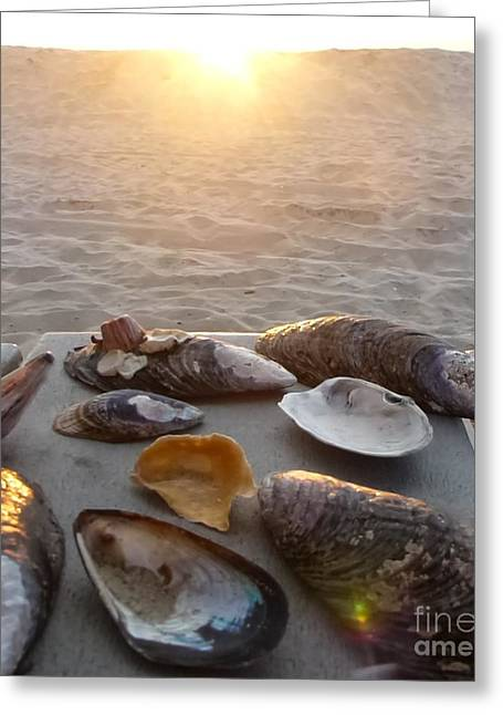 Tabletop Greeting Cards - Good Night Shells Greeting Card by Barbie Corbett-Newmin