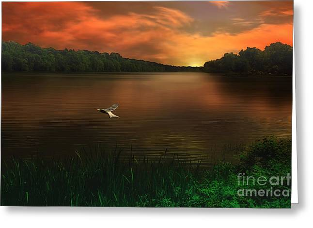 Sundown Framed Prints Greeting Cards - Good Night Sunshine Greeting Card by Tom York Images