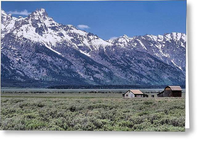 Mountain Cabin Photographs Greeting Cards - Mormon Row Greeting Card by Dan Sproul