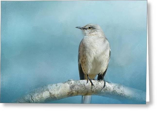 Mockingbird Greeting Cards - Good Winter Morning Greeting Card by Jai Johnson