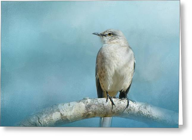 Birds In Winters Greeting Cards - Good Winter Morning Greeting Card by Jai Johnson