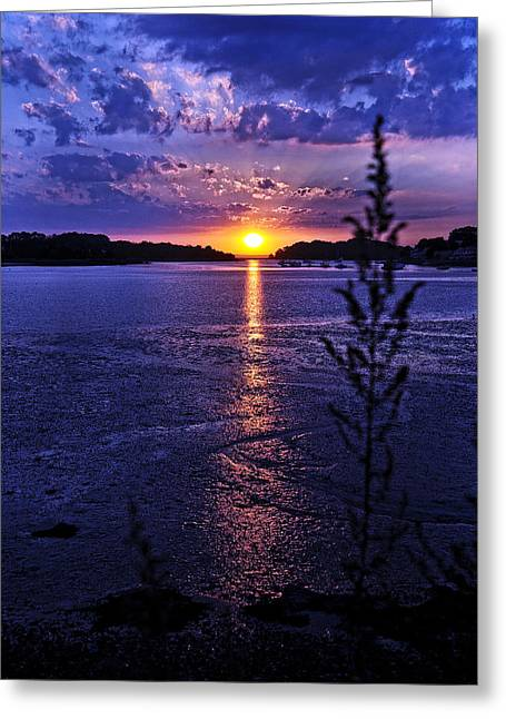 South Boston Prints Greeting Cards - Goodnight Sunshine Greeting Card by Joanne Brown