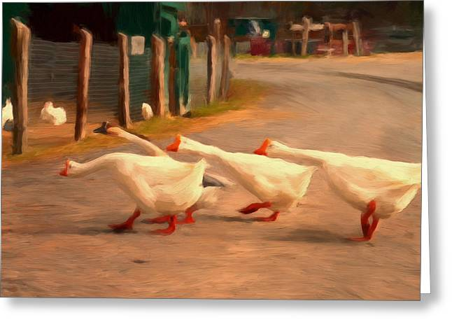 Mother Goose Paintings Greeting Cards - Goose Crossing Greeting Card by Michael Pickett