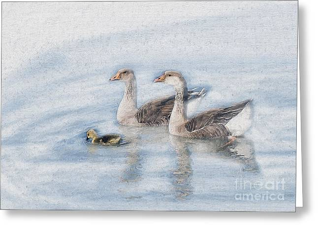 Geese Family Greeting Cards - Goose Family Impasto Greeting Card by Sharon Foster