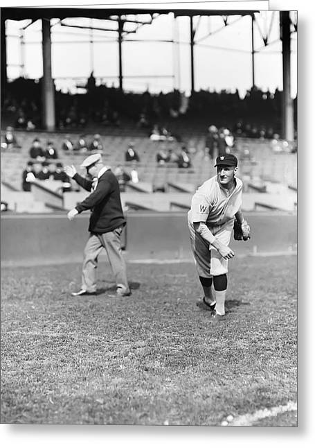 Historical Pictures Greeting Cards - Goose Goslin Warming Arm Up Greeting Card by Retro Images Archive