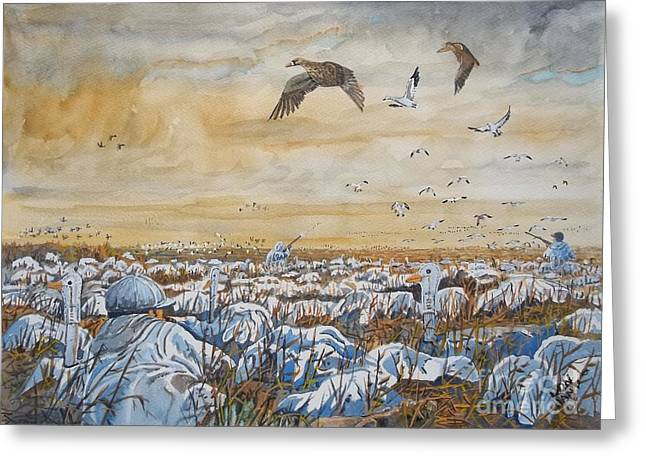 Snow Geese Paintings Greeting Cards - Goose Hunting Greeting Card by Don Hand