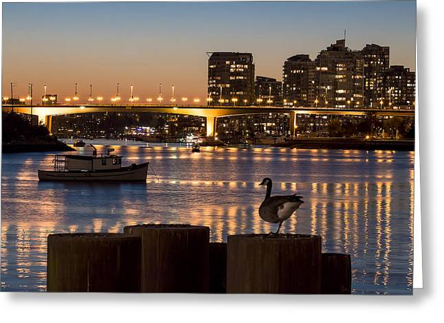 Cambie Bridge Greeting Cards - Goose Necking Greeting Card by Michael Thornquist