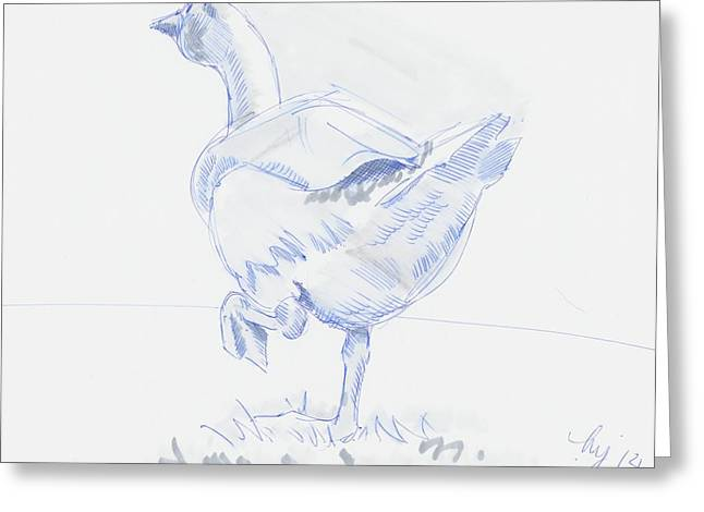 Geese Drawings Greeting Cards - Goose Walking Greeting Card by Mike Jory