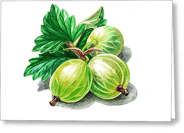 Sour Greeting Cards - Gooseberry Painting Greeting Card by Irina Sztukowski