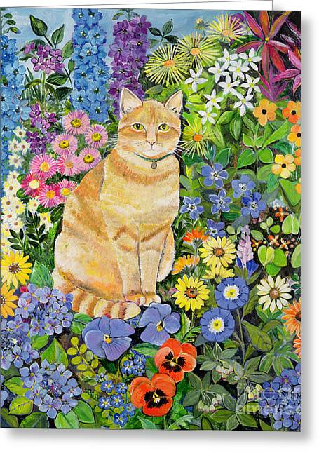Garden Flower Greeting Cards - Gordon s Cat Greeting Card by Hilary Jones