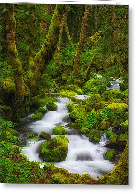 Moss Green Greeting Cards - Gorge Greens Greeting Card by Darren  White