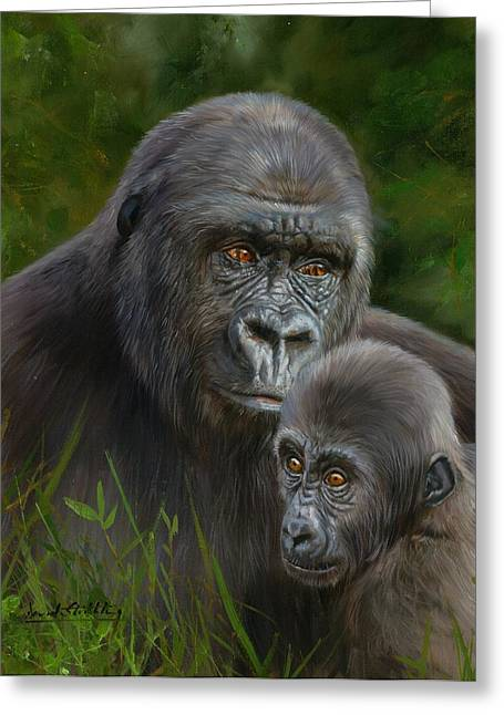 Primates Greeting Cards - Gorilla and Baby Greeting Card by David Stribbling