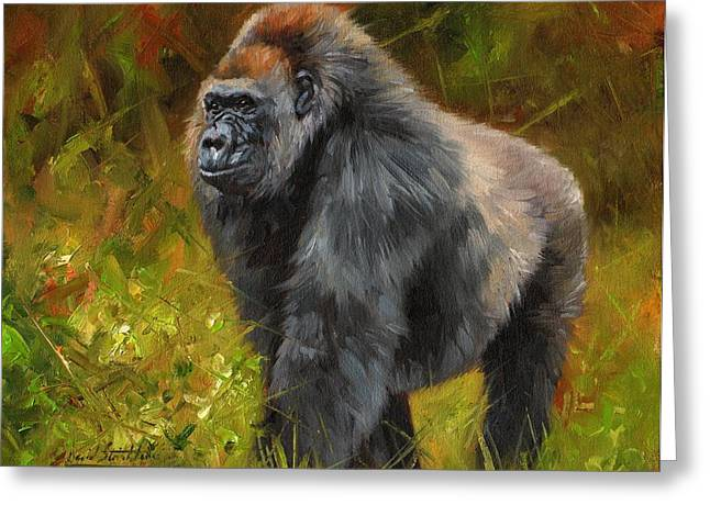 Primate Greeting Cards - Gorilla Greeting Card by David Stribbling