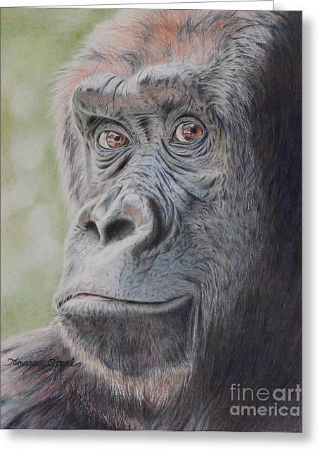 Humanlike Greeting Cards - Gorillas Gaze Greeting Card by Tamara Oppel