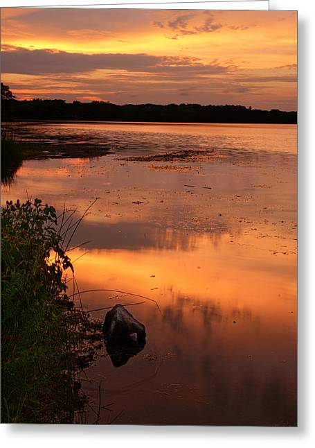 Gorton Pond Warwick Rhode Island Greeting Card by Lourry Legarde