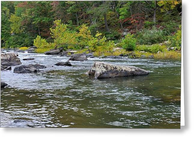 Trout Stream Landscape Greeting Cards - Goshen Pass 1 Greeting Card by Todd Hostetter
