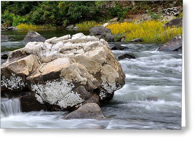Trout Stream Landscape Greeting Cards - Goshen Pass 7 Greeting Card by Todd Hostetter