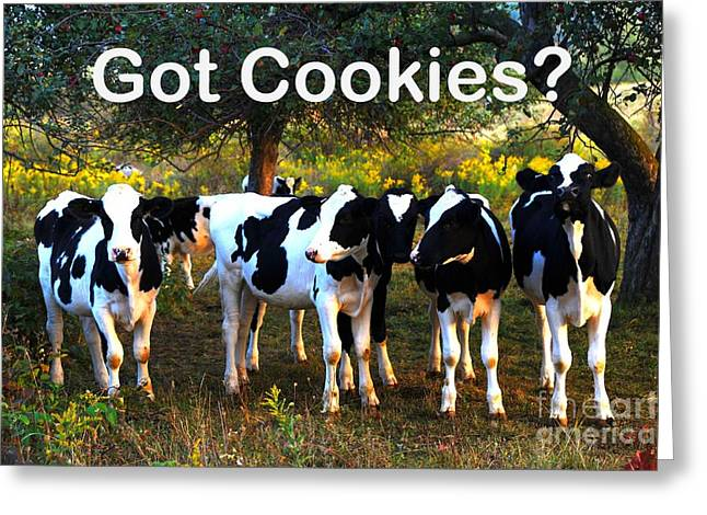 Milk And Cookies Greeting Cards - Got Cookies? Greeting Card by Terri Gostola