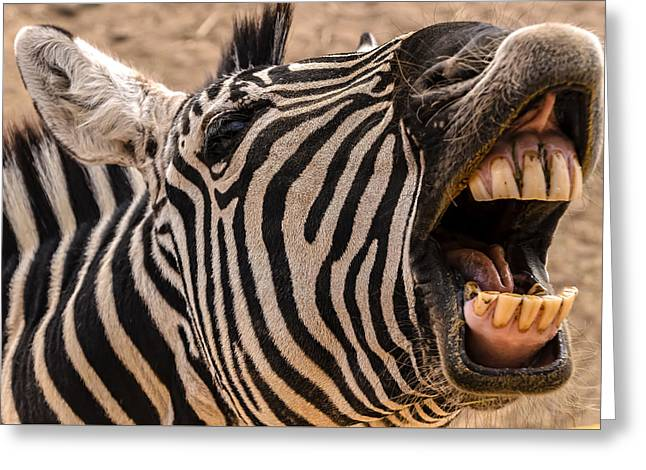 Book Cover Art Greeting Cards - Got Dental? Greeting Card by Mark Myhaver