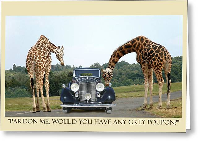 Poking Greeting Cards - Got Grey Poupon Greeting Card by Jack Pumphrey