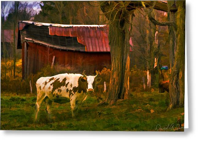 Shed Digital Art Greeting Cards - Got Mail? Greeting Card by David Simons