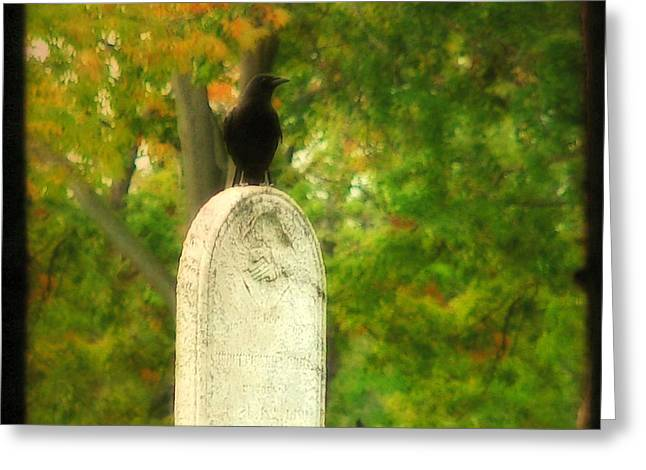 American Crow Greeting Cards - Gothic Autumn Greeting Card by Gothicolors Donna Snyder