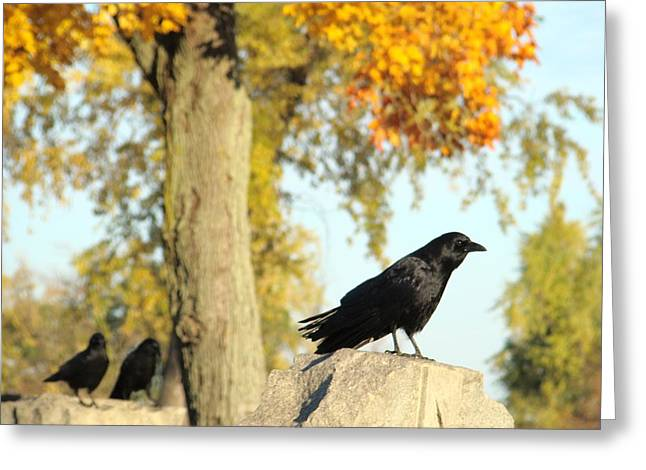 Crows On Tombstones Greeting Cards - Gothic Graveyard Day Greeting Card by Gothicolors Donna Snyder
