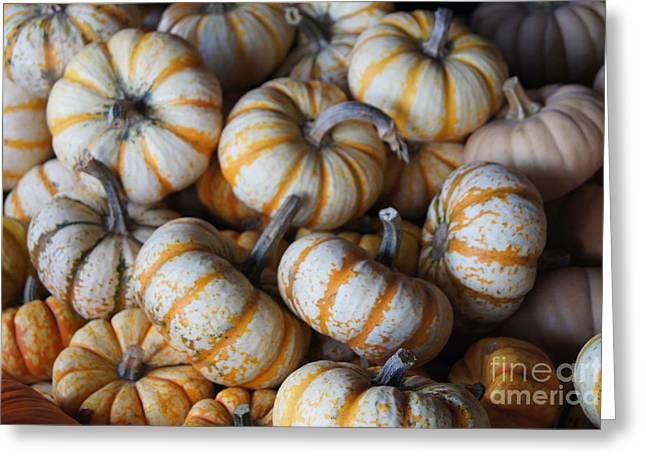 Farmstand Greeting Cards - Gourds Greeting Card by Dawn Puliafico