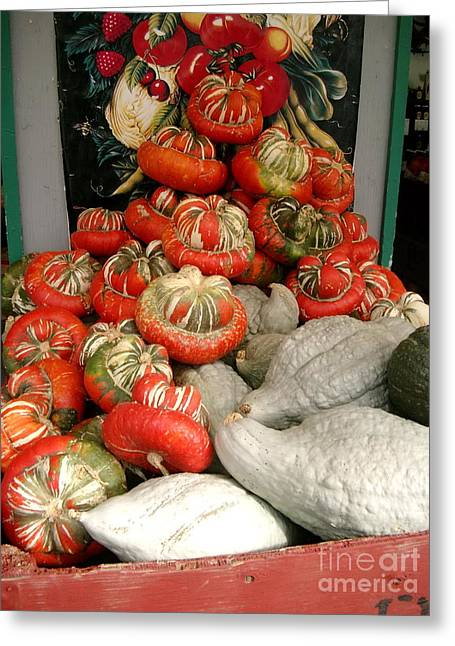 Harvest Time Greeting Cards - Gourds piled high Greeting Card by Joyce Gebauer