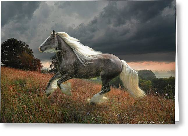 Gypsy Greeting Cards - Grace On The Wind Greeting Card by Terry Kirkland Cook