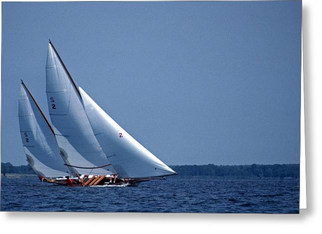GRACE UNDER SAIL Greeting Card by Skip Willits