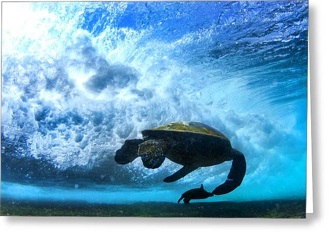 Grace Under The Waves Greeting Card by Sean Davey