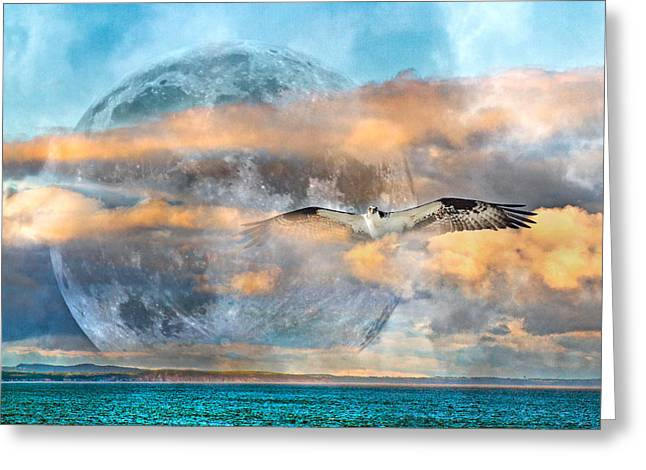 Super Moon Greeting Cards - Graceful Evening Full Moon Osprey Greeting Card by Betsy C  Knapp