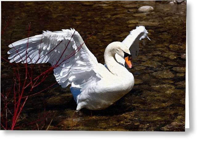 Abstract Digital Pastels Greeting Cards - Graceful Gesture H b Greeting Card by Gert J Rheeders
