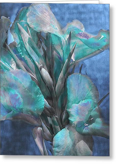 Graceful Gladiolas Greeting Card by Camille Lopez