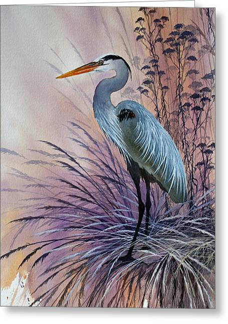 Shore Bird Print Greeting Cards - Graceful Harmony Greeting Card by James Williamson